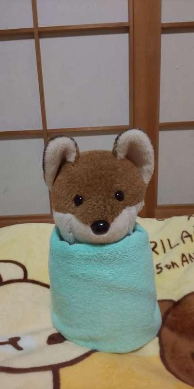 在本千鶴さんのプロフィール画像