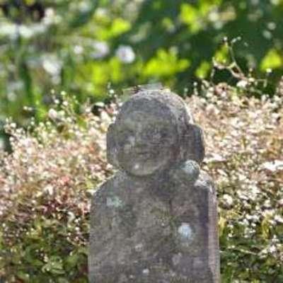 髙橋秀城さんのプロフィール画像