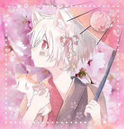 桜雨さんのプロフィール画像