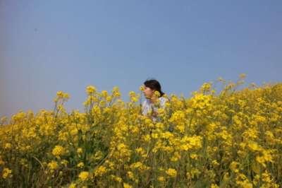 アライヒナコさんのプロフィール画像