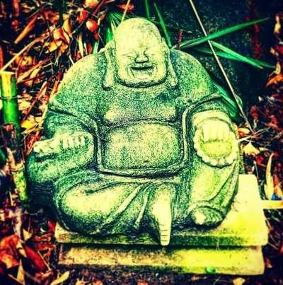 鳥居クグルの神社写真さんのプロフィール画像