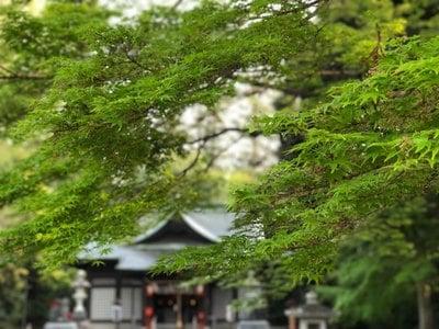 國魂神社さんのプロフィール画像