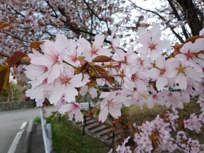 TAKU☆DOALAさんのプロフィール画像