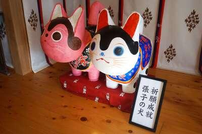櫻井子安さんのプロフィール画像