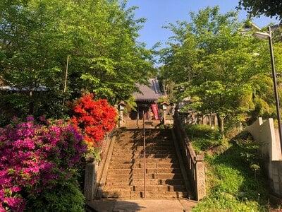 成田山神護寺さんのプロフィール画像